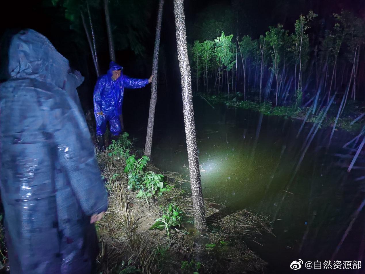 河南防汛人员在前线,图源社交媒体,下同