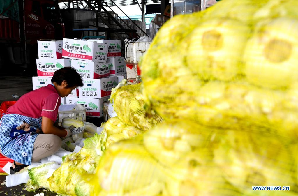 A staff member arranges vegetables at a logistic center in Zhongmu County of Zhengzhou, central China's Henan Province, July 22, 2021. Various measures have been taken to ensure supply of agricultural products in Zhengzhou, which was swamped by flood recently caused by heavy rainfall. At present, the supply of vegetables has been adequate with stable price. (Xinhua/Hao Yuan)