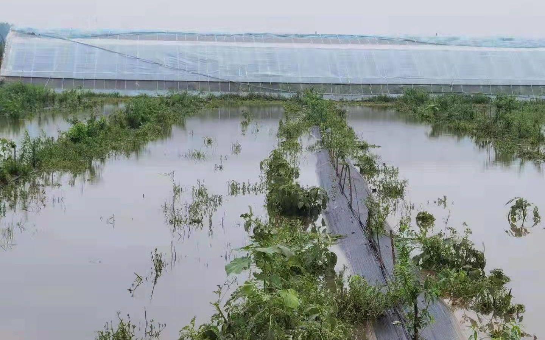 新乡基地积水正在逐步退去。受访者供图
