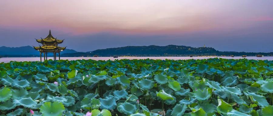 西湖水融入黄河浪 兰州城东会擦出怎样的火花