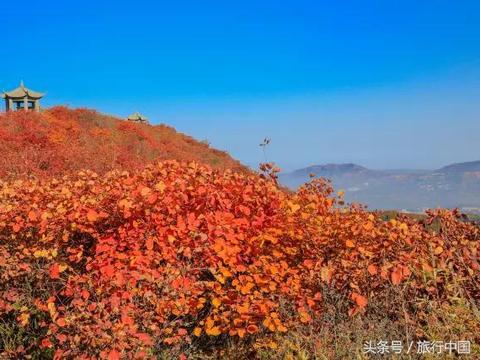 郑州周边 红叶圣地