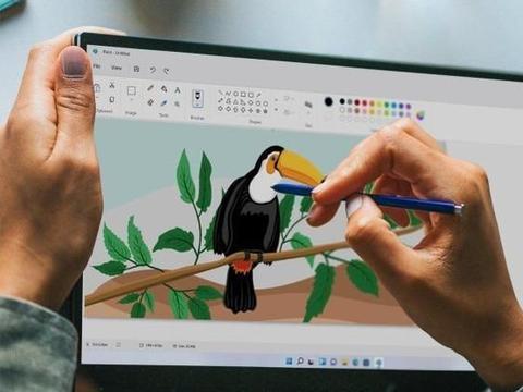 Windows 11 库存照片泄露,即将重新设计的 Microsoft Paint