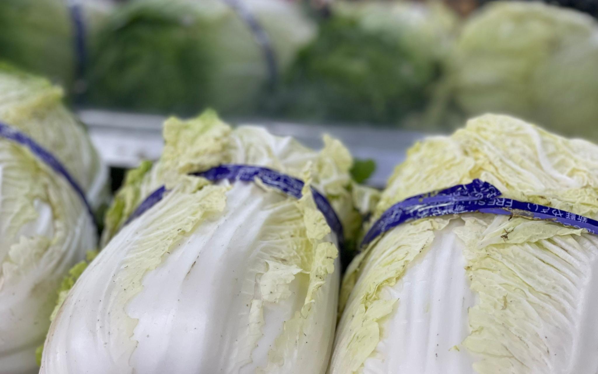 北京:产量减雨水增 大白菜身价翻倍上涨