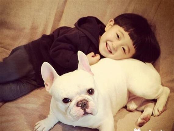 十大最可爱的狗,二哈才特么第七