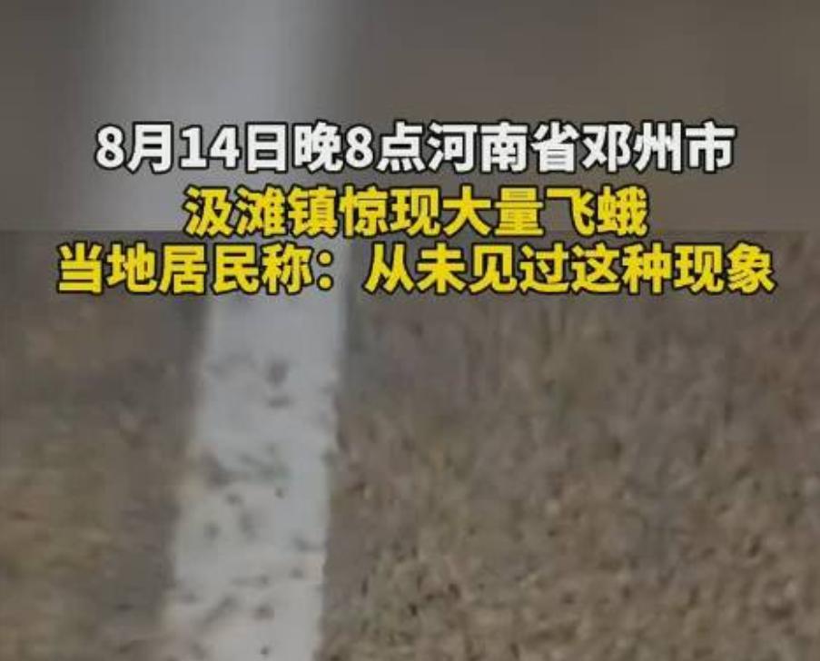 河南邓州惊现大量蜉蝣!居民称从未见过这种现象,天气要大变了?