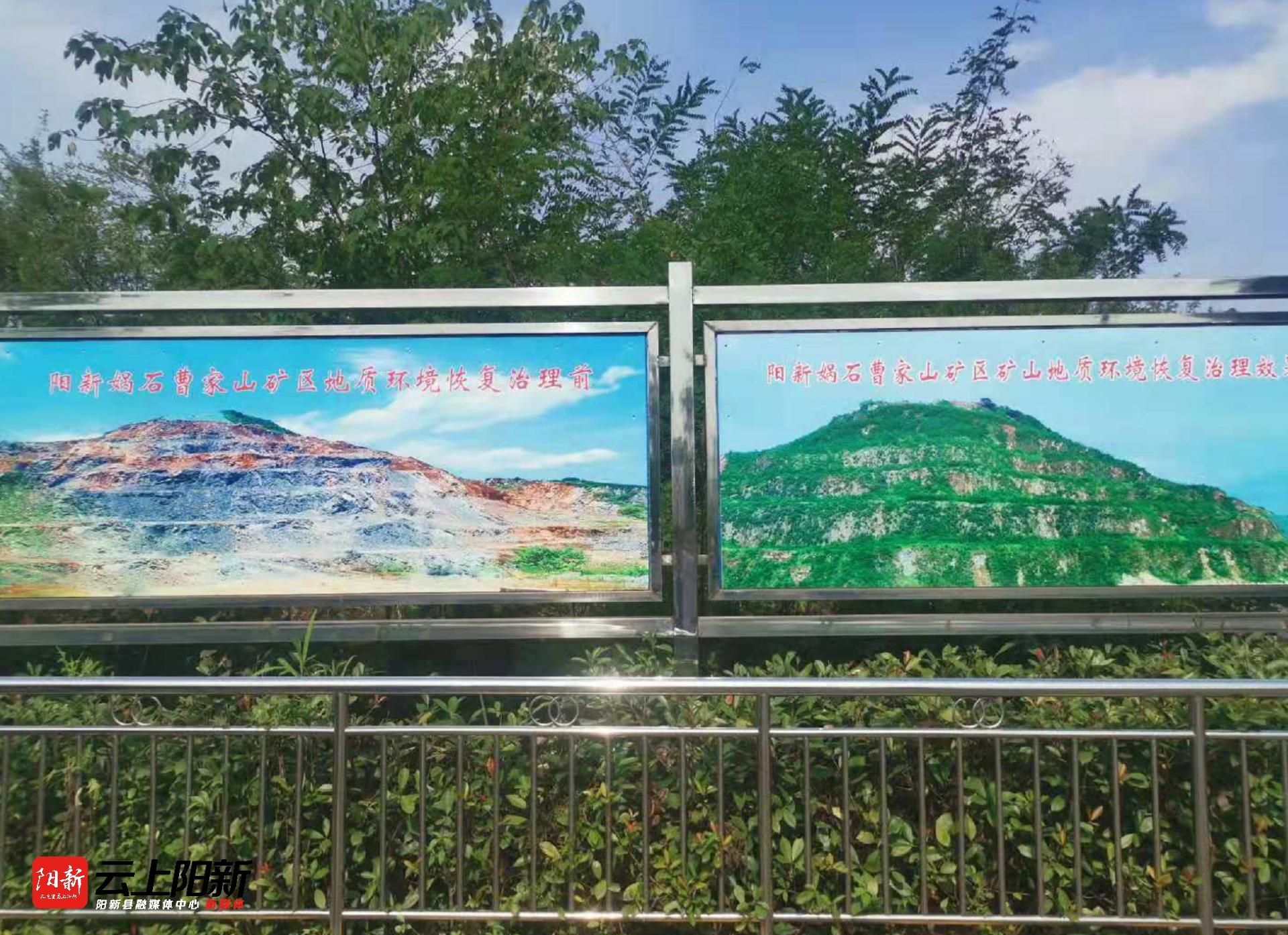 阳新新闻:万鼎到娲石水泥绿色建材项目一线进