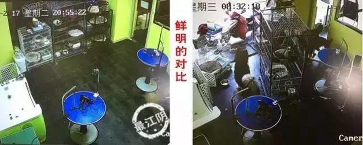 http://www.weixinrensheng.com/mengchong/2996834.html
