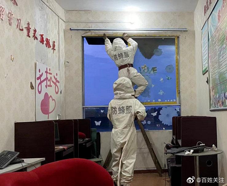 贵州一学校惊现巨型马蜂窝 直径达70厘米!