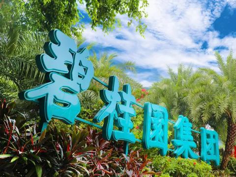 碧桂园的高质量发展怎么样了?