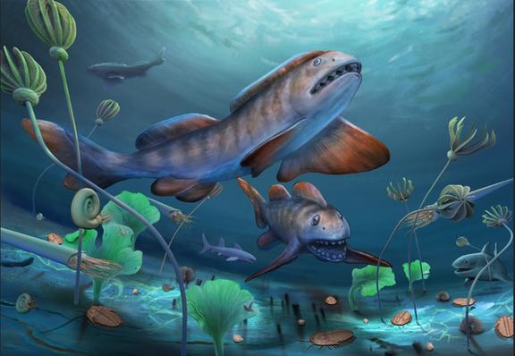 2.9亿年前山西阳泉瓣齿鲨的生态复原图(杨定华绘)。