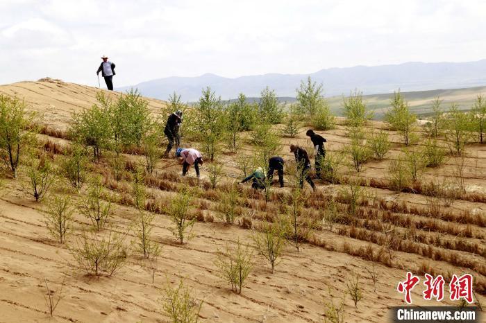 图为贵南县正在治理的黄沙头。(资料图) 马铭言 摄