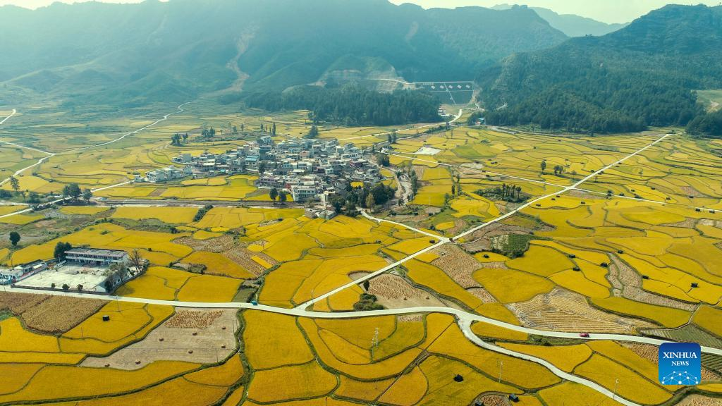 Aerial photo taken on Sept. 12, 2021 shows paddy fields in Jinpi Village of Wantanhe Township in Longli County, southwest China's Guizhou Province. (Photo by Long Yi/Xinhua)