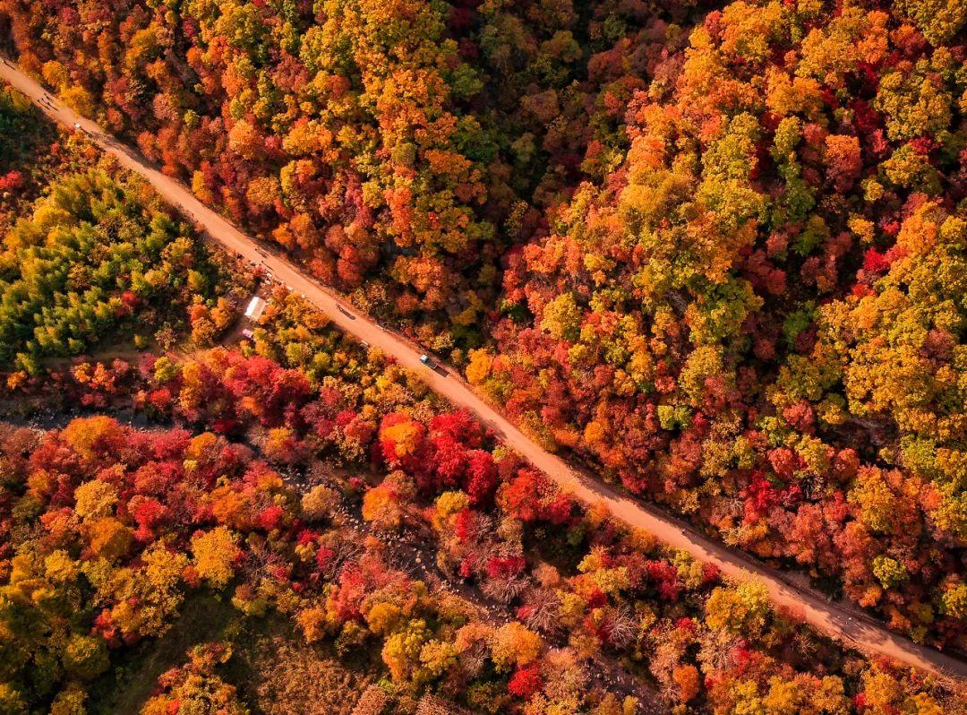 秋天最美的10条自驾线 9、10月已美成天堂