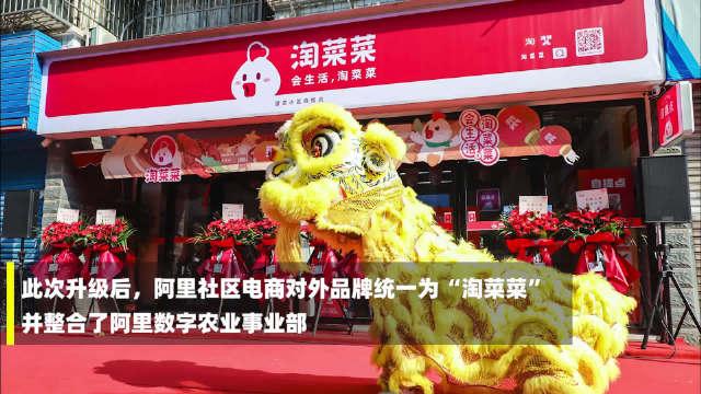 9月14日,阿里社区电商正式品牌升级为淘菜菜……