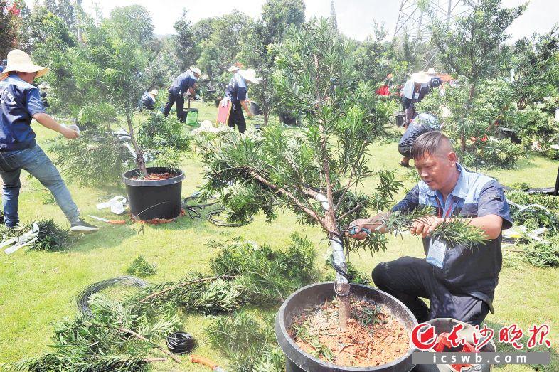 http://www.k2summit.cn/caijingfenxi/3487589.html
