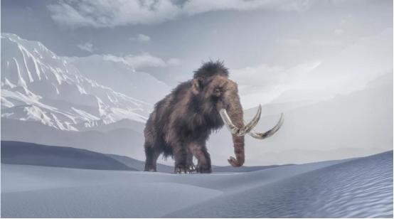 猛犸象已灭绝上万年,<a href=