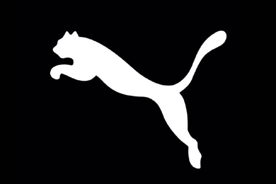 美洲豹最好的五名NBA代言人,拉梅洛鲍尔代言合同最大