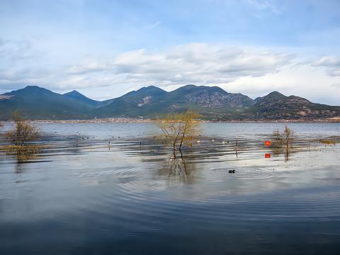 """丽江小众旅游景点,云南首个以""""湿地""""命名的保护区,景美人少"""