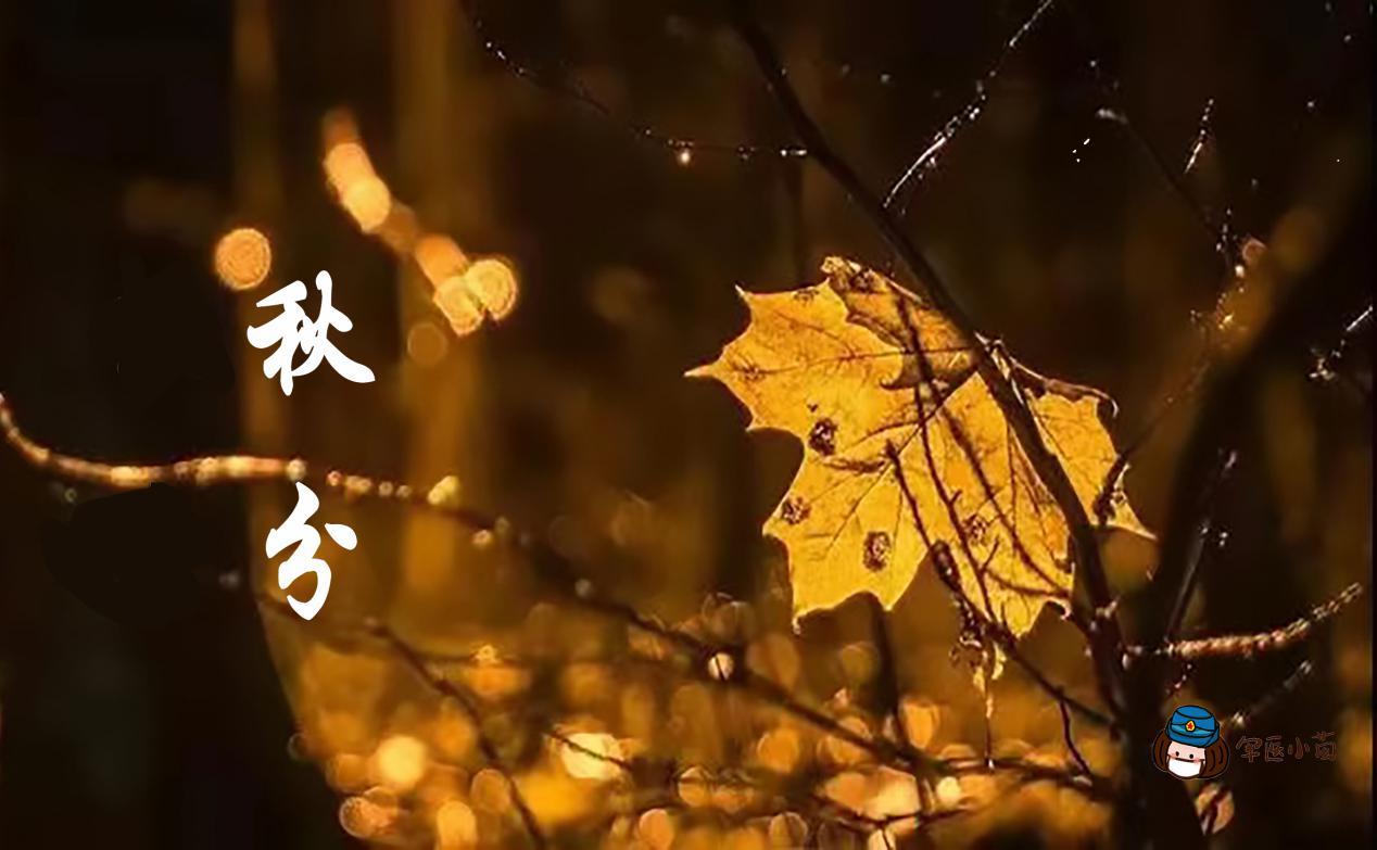 军医小茵丨今日秋分