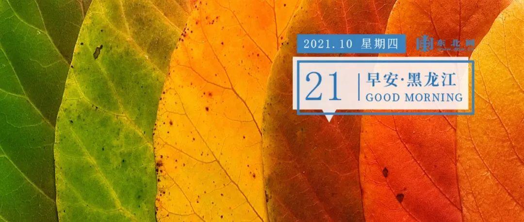 """【早安·黑龙江】17 万平方米!哈尔滨一""""巨型""""违建群被拆除!"""