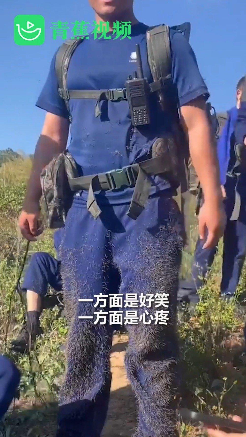 心疼又好笑!凉山消防员野外训练时 衣裤扎满草刺像穿着毛裤