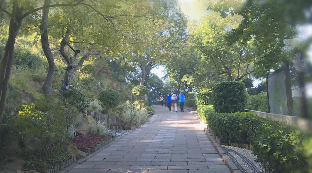 秋意浓丨青岛的秋天颜值持续爆表