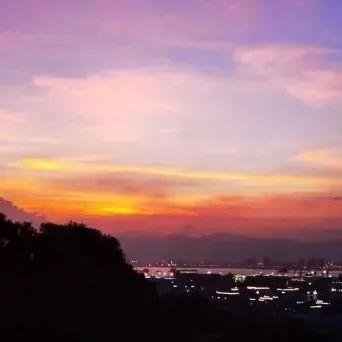 【原创·美图】独爱鹭岛的朝朝与暮暮