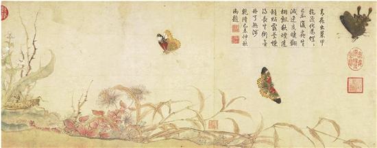当科学家和艺术家联手 北宋来的蛱蝶如何振动翅膀?