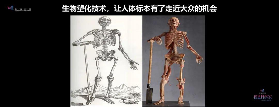 隋鸿锦:像我这样教人体解剖学的老师,有时候真是涕泪交加,斯文扫地