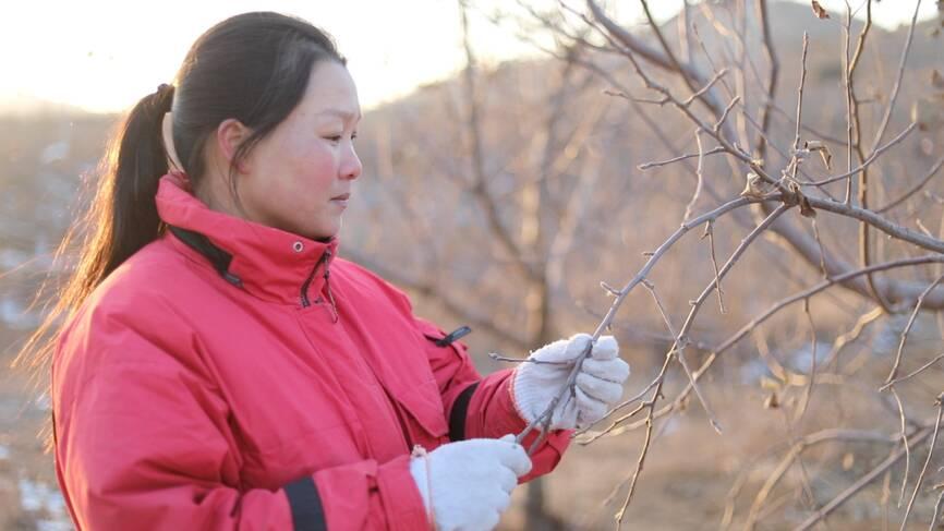 80后山东农妇成全国劳模:她从大山深处走出一条淘宝创业路