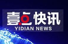 肥城警方破获一起盗刷支付宝花呗案:陈某,被采取刑事强制措施!