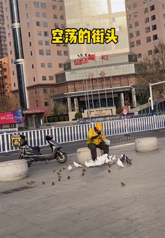石家庄往日热闹广场上,外卖小哥孤身喂鸽子!网友:心酸,期待快点好起来!