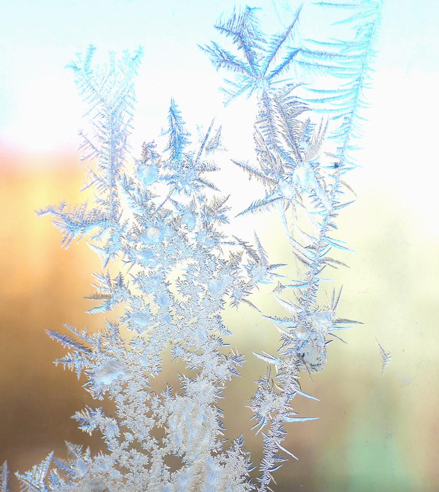 """【图说新疆】晶莹冰窗花 大自然的意趣""""手绘"""""""