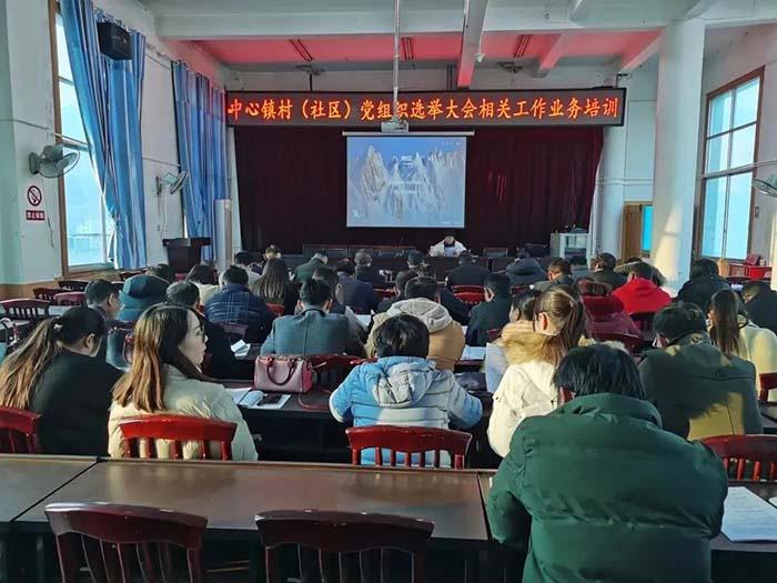 华坪县圆满完成村(社区)党组织换届选举工作