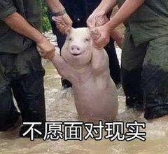 重庆最新求职期平均工资出炉!这次,你拖后腿了没?