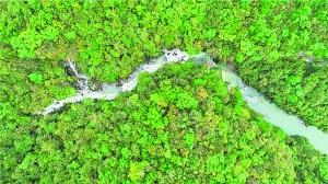 贵州茂兰保护区获批 全国自然教育基地