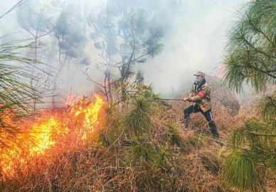 森林眼 蓄水池 防火道 防火码