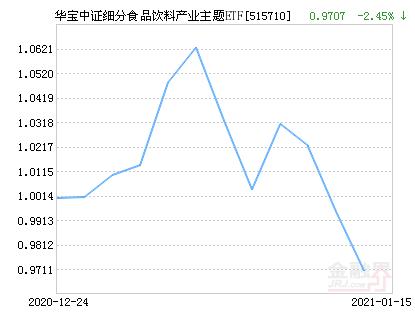 华宝中证细分食品饮料产业主题ETF净值下跌2.45% 请保持关注