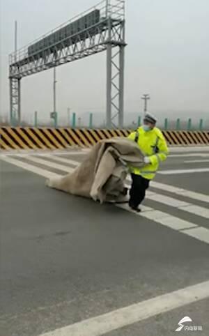 13秒|篷布掉落高速隐患大 泰安高速交警及时清理排险情