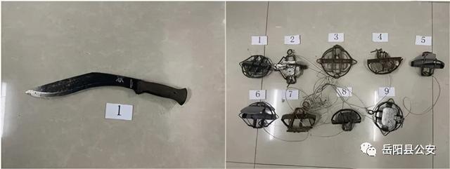 县域警务·扫扬尘行动,岳阳县警方破获一起非法狩猎案