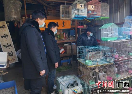 桂林七星区市场监管局调查经营户涉嫌销售野生动物行为