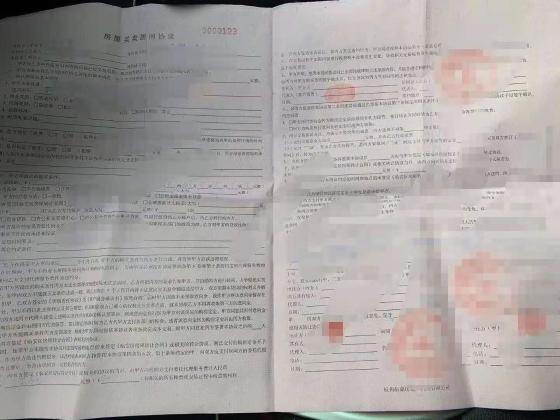 男子买房被骗48万 嫌疑人落网时已身无分文 警方释案:一般人都易中招