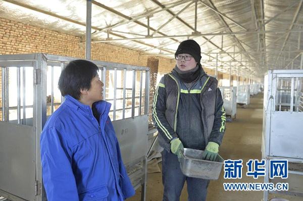 寇启芳(左)在宁夏吴忠市红寺堡区红寺堡镇城东养殖园区内向科研人员了解试验进度(1月7日摄)。新华社记者 唐如峰 摄