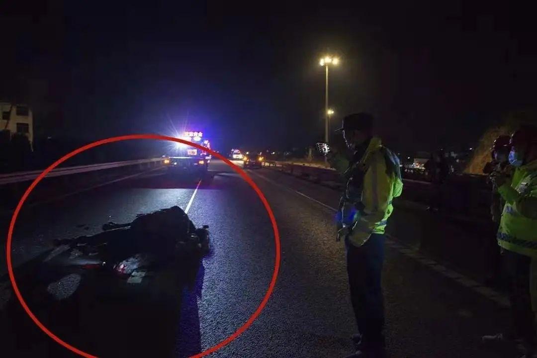 浙江女司机高速上撞了一匹马