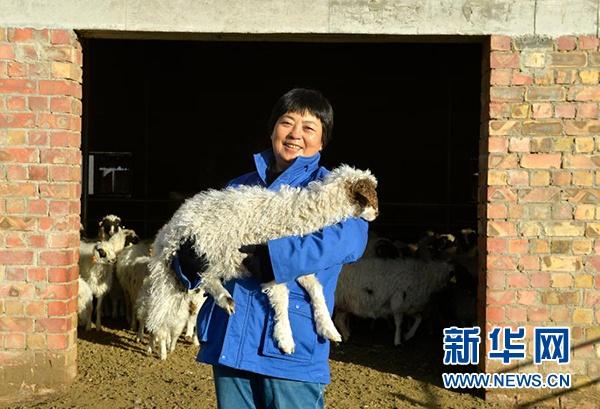 在宁夏吴忠市红寺堡区红寺堡镇城东养殖园区,寇启芳与一只小羊羔合影(1月7日摄)。新华社记者 唐如峰 摄