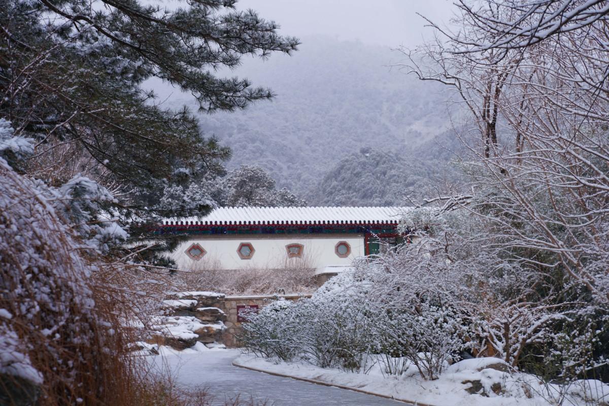 美图   香山看雪,分外妖娆