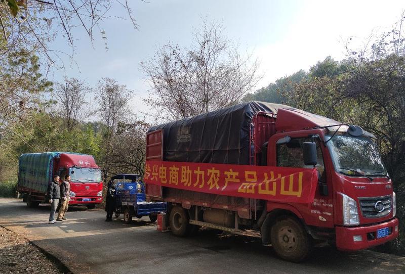 """韶关始兴:电商进农村,助农产品""""乘网出山"""""""