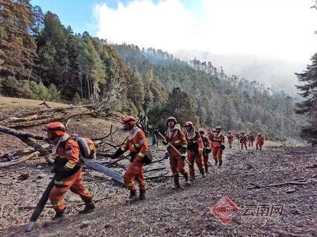 迪庆香格里拉森林火灾明火被扑灭