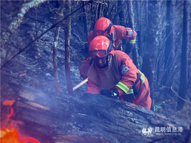 迪庆香格里拉森林火灾全部扑灭