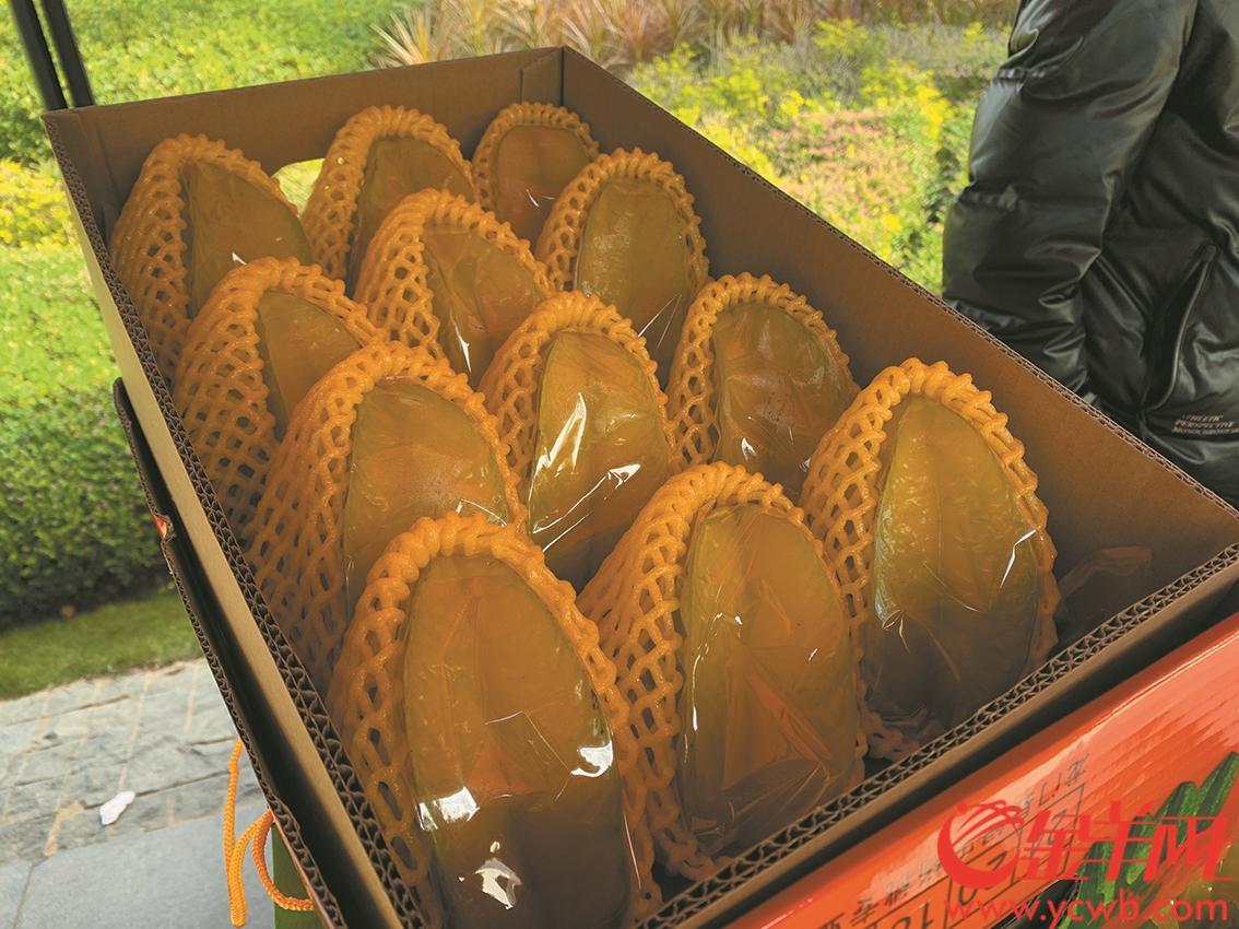 惠州龙门麻榨镇打造年产值亿元岭南杨桃之乡 农户年收入超百万